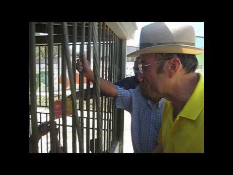 Ottón Solís y Roman Macaya en Los Guido