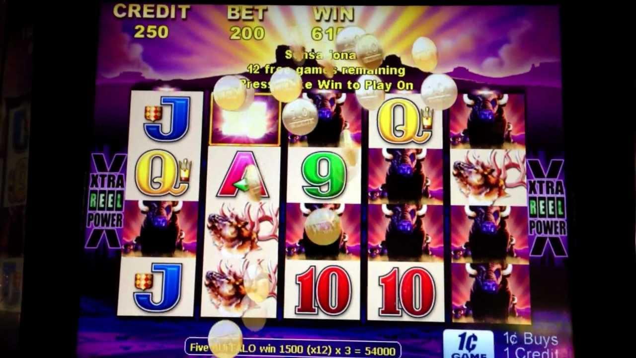 big win on buffalo slot machine