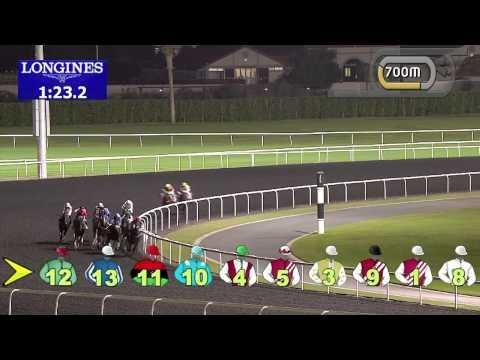 Vidéo de la course PMU THE JAGUAR F-TYPE TROPHY