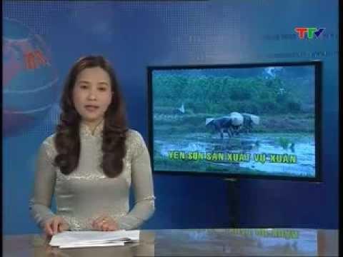 Thoi Su Tuyen Quang Ngay 17 2 2013