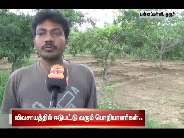 IT Professionals Turns Farmer In Poonapalli Village : Thanthi TV