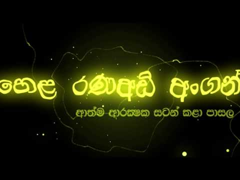 Angampora  The Traditional Martial art of Sri Lanka (හෙළ රණඅඩි අංගන්)