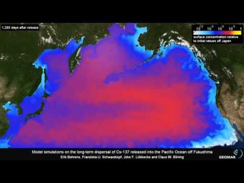 for Pacific ocean radiation fish