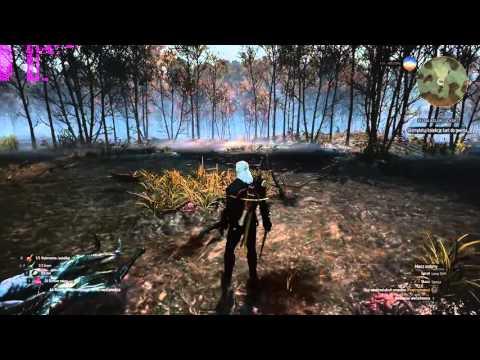 The Witcher 3 : Wild Hunt - Test (ULTRA) AMD FX 8320 OC 4,1 Ghz & MSI GeForce GTX 970