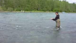 Kenai River Sockeye / Red salmon slaying - Frank Holdburg view on youtube.com tube online.
