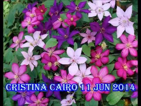 Cristina Cairo 11 jun 2014