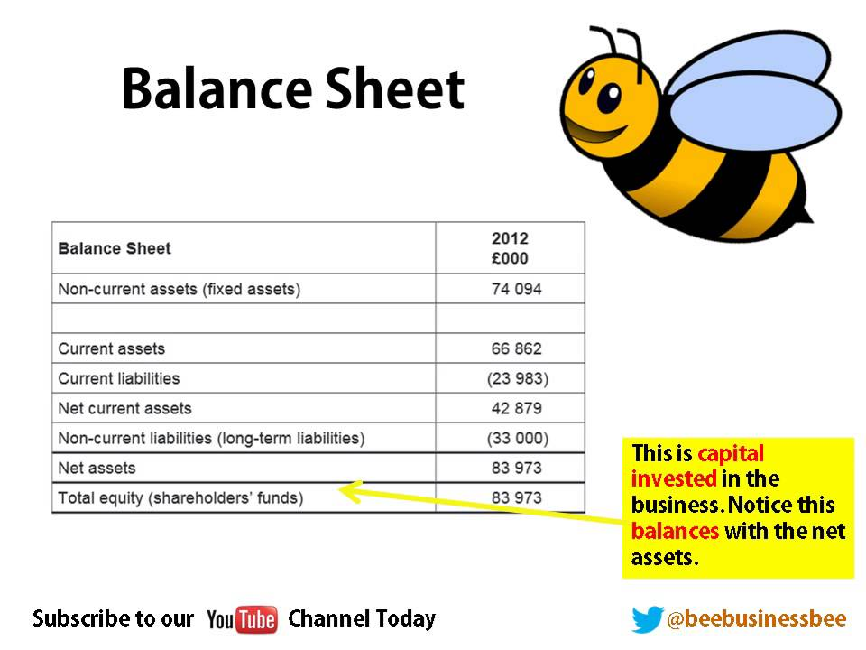 Bee Business Bee Balance Sheets and Income Statements Tutorial ...