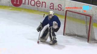 Drunk Czech Hockey Goalie