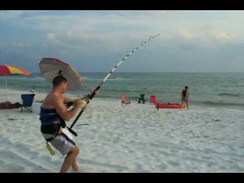 Florida tiger shark fishing from the beach monster for Shark fishing gear for beach