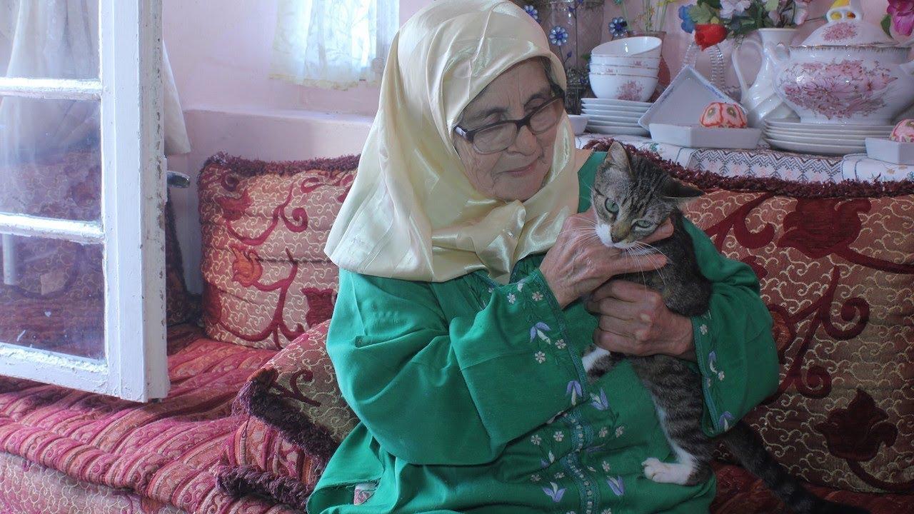 آسية.. سيدة طنجاوية وهبت حياتها للإعتناء بالقطط