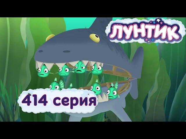 Новые серии - 414 серия. Морские обитатели