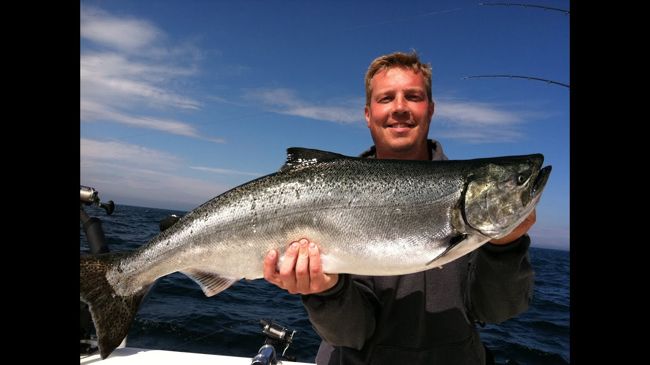 Salmon and steelhead fishing lake michigan charters algoma for Salmon fishing wisconsin