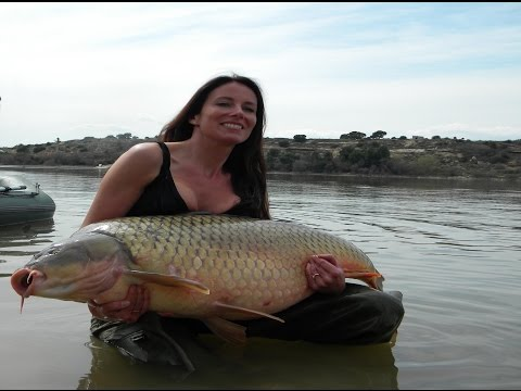 Un femme capture une carpe de +30 kg