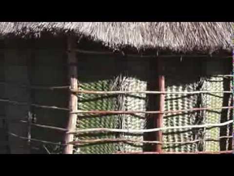 Construire une case kanak / Building a kanak house - Arhö