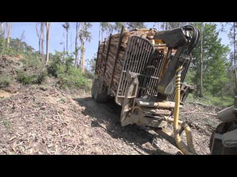 COSTA forestry 4WD trailers and cranes / Reboques e gruas florestais COSTA