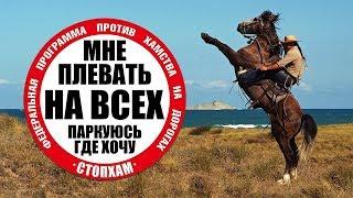 СтопХам Омск - Ковбой - Cowboy