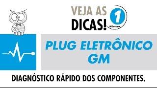 Dica MTE 01 – Plug Eletrônico GM