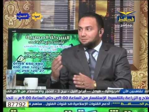 (الجوجوبا) نبات المستقبل. حلقة خاصة على قناة الحافظ مع الاستاذ/ حسن البسيونى عامر