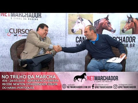 #36 - NO TRILHO DA MARCHA - 28/05/2018 - NEWTON JUNIOR DO HARAS PORTO AZUL - MANGALARGA MARCHADOR