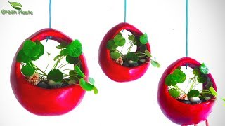 Hanging Tree pot | Hanging Planter Vase at Home | Decorative Showpiece for Home Decor//GREEN PLANTS
