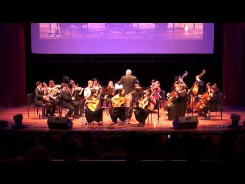 Gala Concert In Aid of The Philippine Typhoon Haiyan- featuring The Triple Fret
