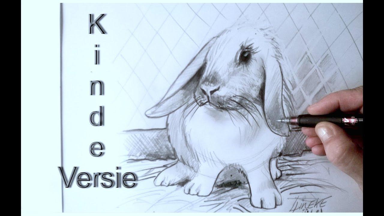 Hoe teken je een konijn kinderen en beginners youtube - Hoe sluit je een pergola ...