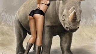 [Sensation !!! Amazing farmers - RHINOCEROS !!!  elephant, po...] Video