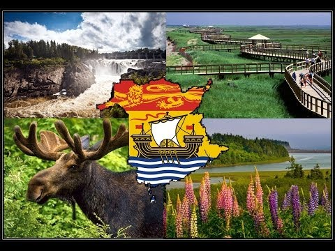 My Home In New Brunswick by the Sea
