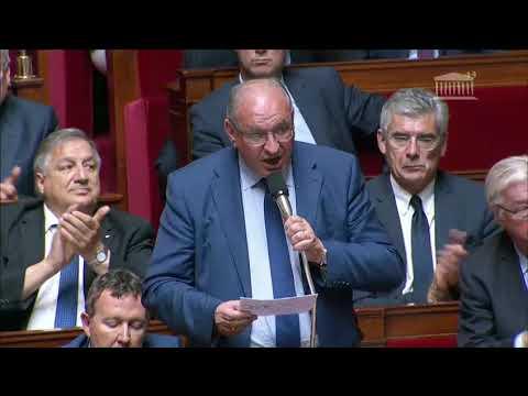 M. Bernard Perrut - Pensions de réversion