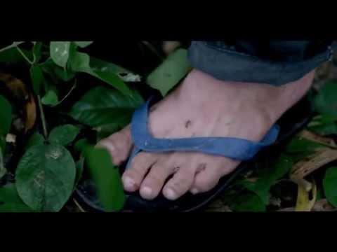 Trailer Tía ơi