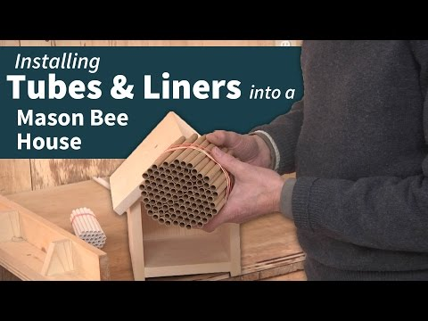 Using Tubes & Liners in your Mason Bee Housing