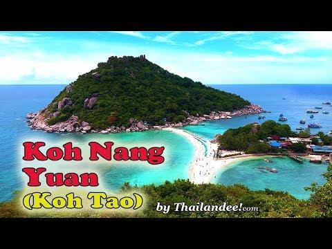 l'île de koh nang yuan en face de koh tao