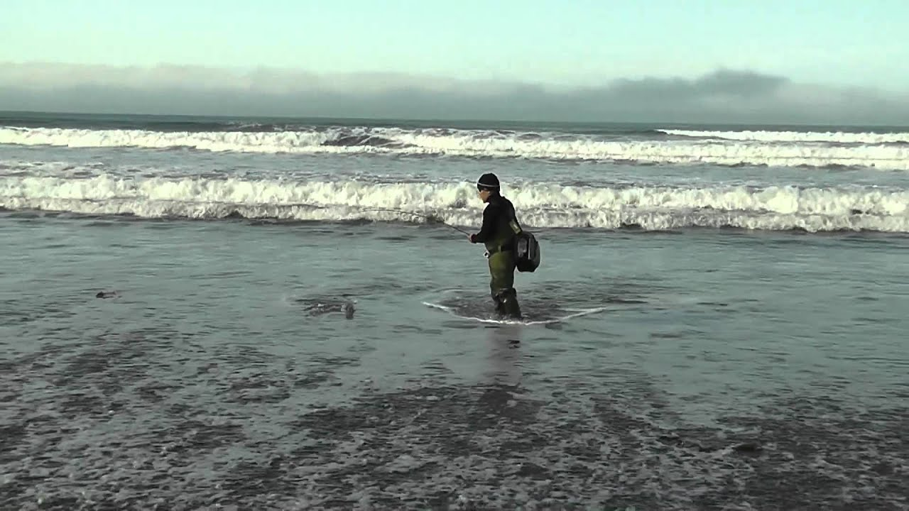 My first surfperch fishing trip of 2012 at morro bay youtube for Morro bay fishing