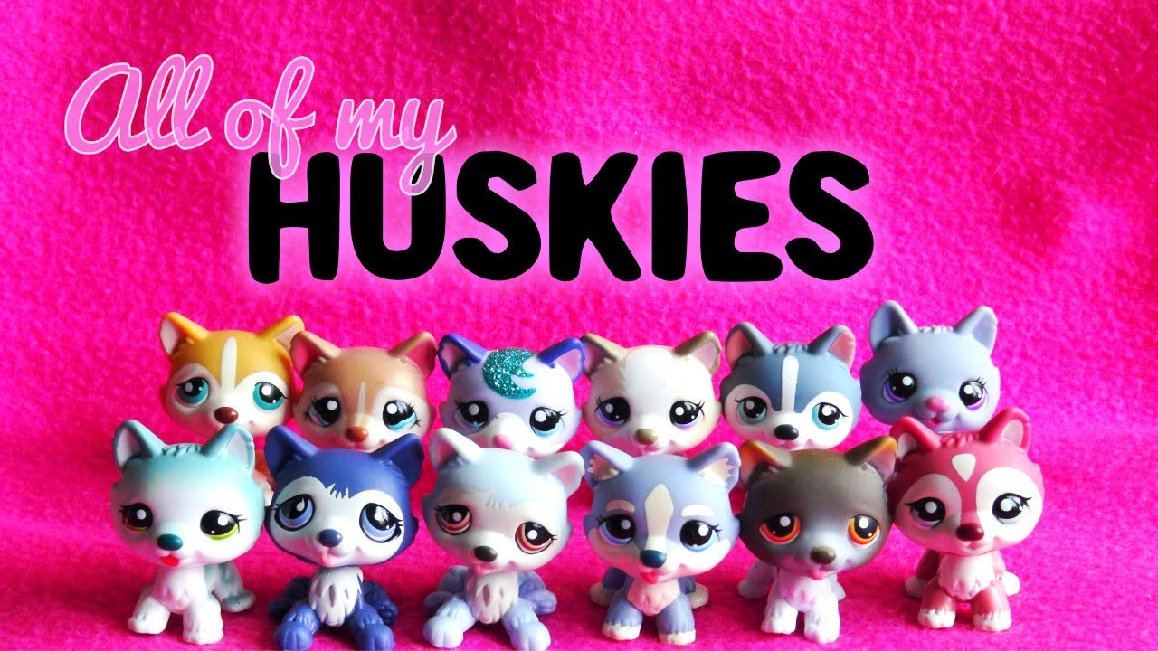 All of My LPS Huskies! - YouTube