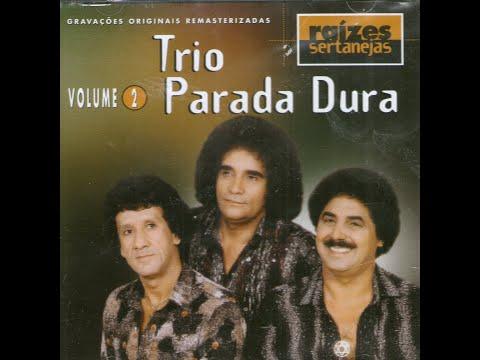 TRIO PARADA DURA-CASTELO DE SONHOS.wmv