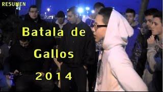 Batalla De Gallos 2014 Santander Resumen De Las Batallas