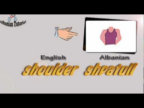 Albanian Tutorial - Body Parts/Pjeset e Trupit