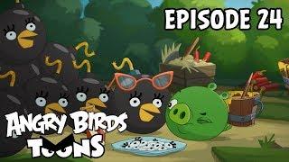 Angry Birds - S2 E24 - Bombina