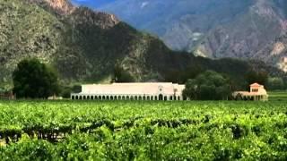 Viticultura en Bolivia