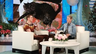 Dave Franco's Cats Took Over His Life