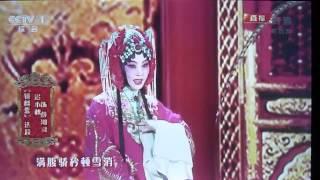 Peking Opera 2014 Chinese New Year Eve TV Show