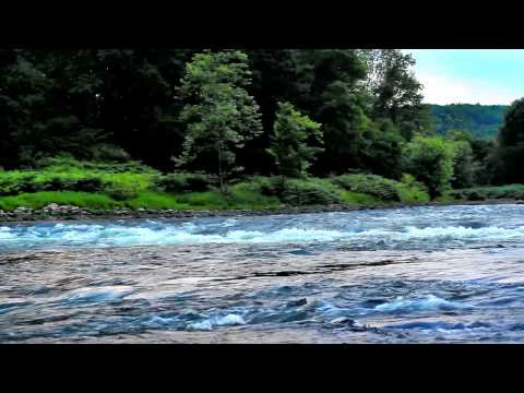 Delaware River Rapids DreamScene Video Screen Saver & Desktop