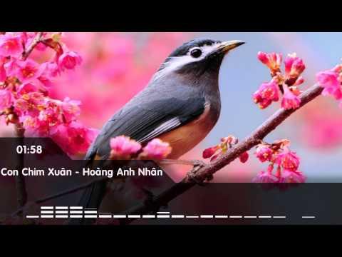 Con Chim Mùa Xuân Đa Tình Hơn Con Bướm Bố Chịu Thằng Nào Nghĩ Ra Bài Này.