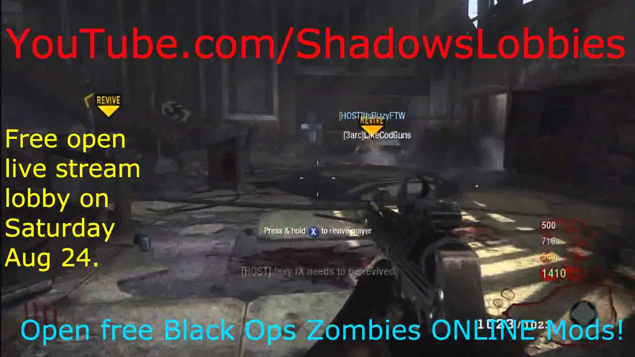 Call Of Duty Black Ops Modded Zombies Open Online