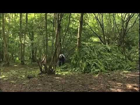 Shelter Building with Lofty Wiseman & Trueways Survival