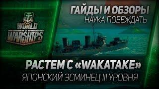 Гайды и обзоры #18: Растем с Wakatake Японский эсминец III уровня в ЗБТ