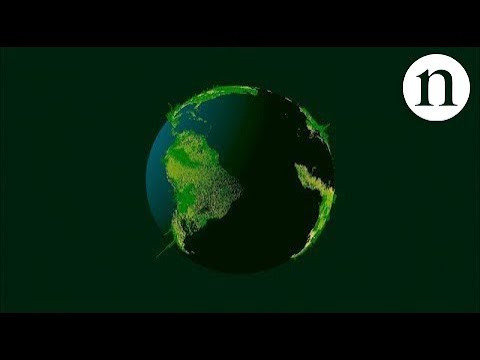 Vídeo Mapping tree density at a global scale