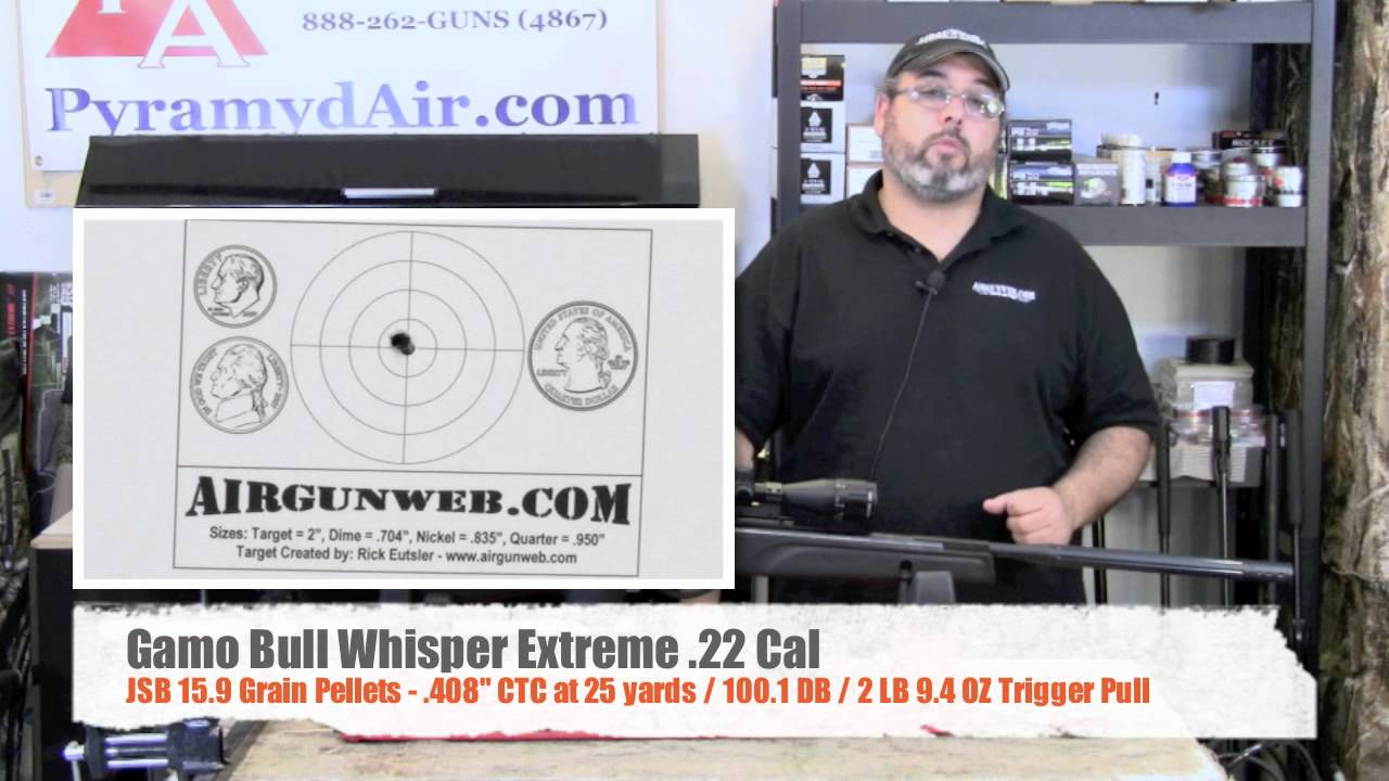Gamo bull whisper extreme 22 product review youtube