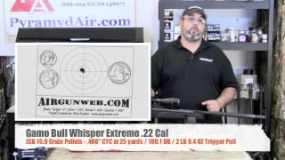 Gamo Bull Whisper Extreme .22 Product Review