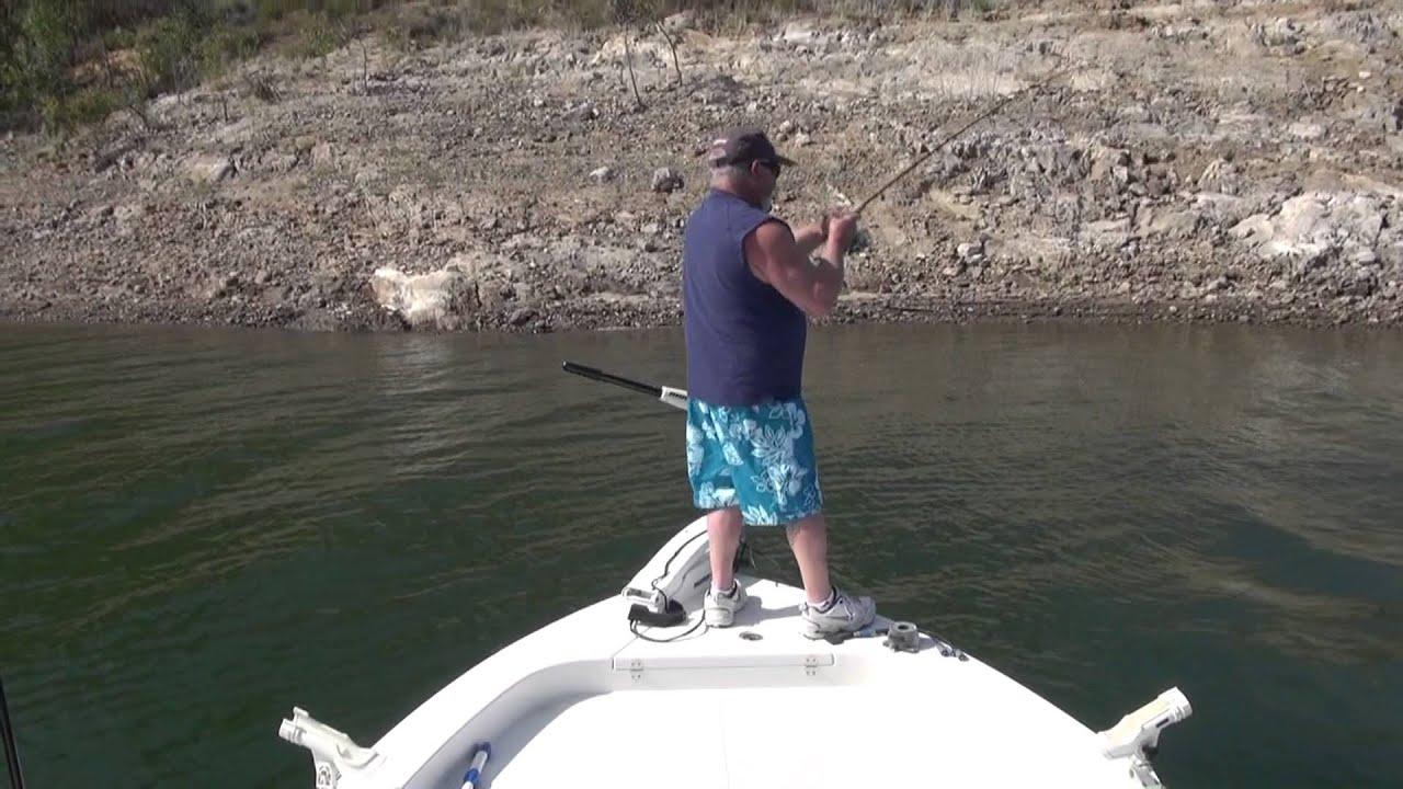 Fishing diamond valley lake largemouth bass light line the for Diamond valley lake fishing